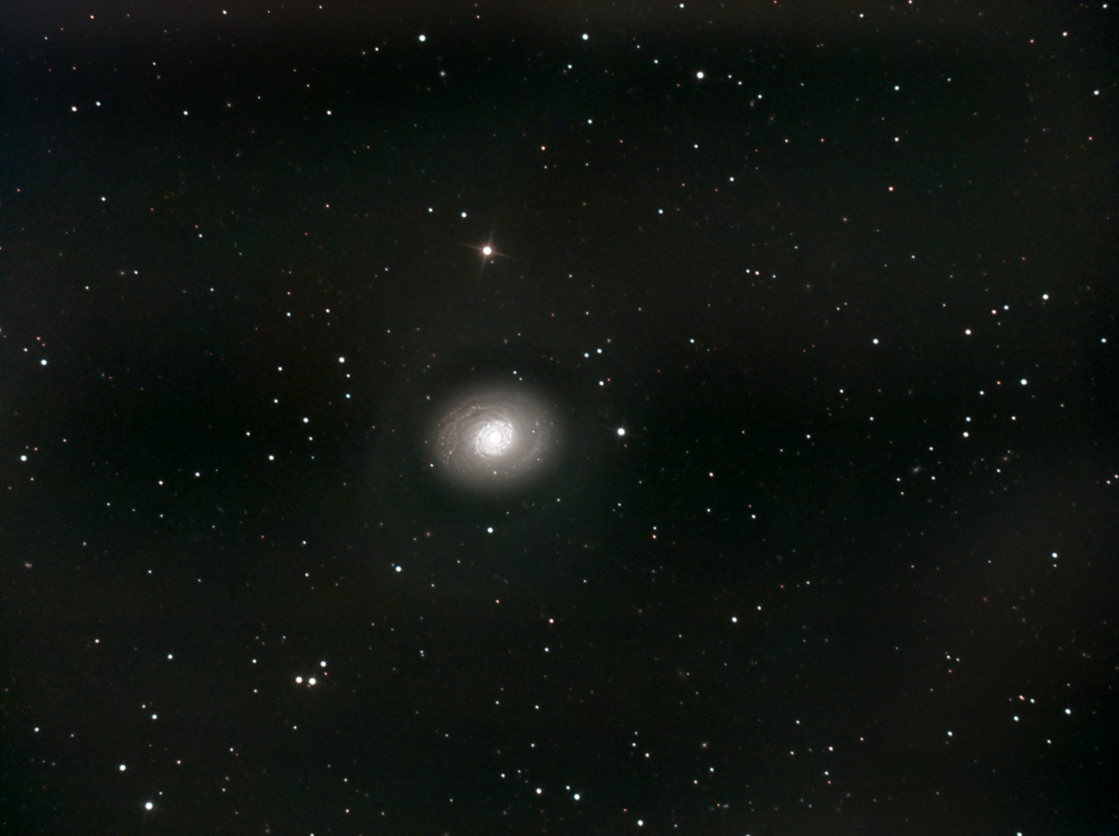 M94 in Canes Venatici. Imaged from Kendal